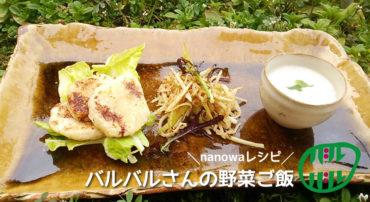 【nanowaレシピ】バルバルさんの野菜ご飯(1)