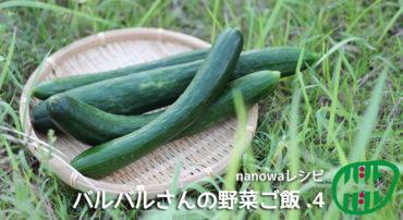 バルバルさんの野菜ご飯(4)