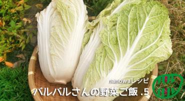 バルバルさんの野菜ご飯(5)