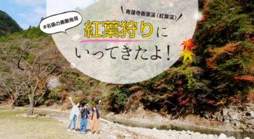 名張市香落渓に紅葉狩りにいってきたよ!